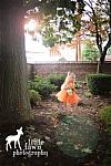 Fawn Fairy Inspired Halloween Costume