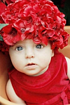 Red Silk Flower Hat