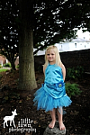 Silvermist Fairy Inspired Halloween Costume