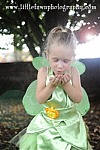 Tinkerbell Fairy Inspired Halloween Costume