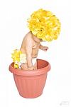 Yellow Silk Flower Hat