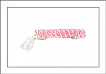 Princess Swarovski Crystal Hair Barrette