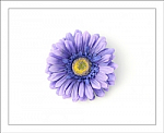 Purple Gerber Daisy Flower Hair Clip